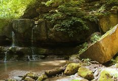 Small falls in a thicket, the green jungle Royalty Free Stock Images