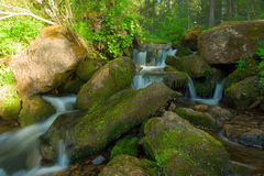 Small falls in a wood. Royalty Free Stock Images
