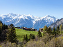 Small farm at early spring morning in Swiss alps near Leukerbad. Bodmen, Valais, Switzerland royalty free stock photo