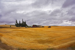 Small farm in fields of Montana Stock Images