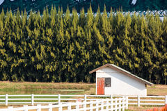 Small farm house. With trees Stock Images