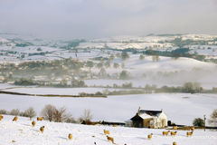 Small Farm Land in Snow Covered Hills Royalty Free Stock Photography