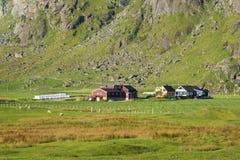 Small farm on Lofoten Islands, Norway Royalty Free Stock Image