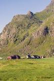 Small farm on Lofoten Islands, Norway Royalty Free Stock Photos