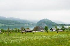 Small farm Stock Image
