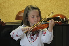 A small fiddler Royalty Free Stock Images
