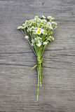 Small field daisies bouquet on old wooden background Royalty Free Stock Photos
