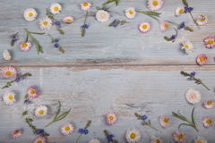 Small field flowers on vintage weathered wooden background. Retro styled floral background. Royalty Free Stock Photos