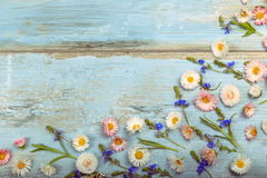Small field flowers on vintage weathered wooden background. Retro styled floral background. Stock Image