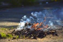 A small fire on the asphalt. Lighting of bonfires. Bonfire smokes Stock Images