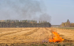 Small fire corner of field Royalty Free Stock Image