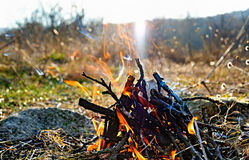 Small fire in nature Stock Photo