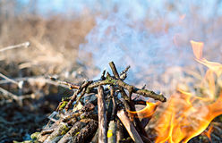 Small fire in nature Royalty Free Stock Photos