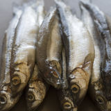 Small fish (capelin) on the table Stock Photos