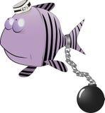 Small fish the prisoner. Carp cartoon gangster Stock Image