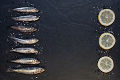 Small fishes with lemon on the table Stock Images