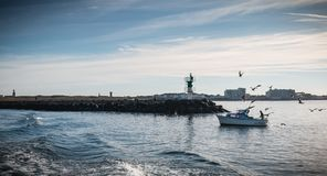 Small fishing boat entering the harbor accompanied by seagulls stock image