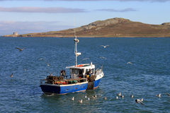 Small Fishing Boat Howth. A small fishing boat off Howth harbour in Ireland Royalty Free Stock Images