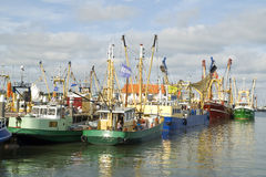 Small fishing boats in the Dutch port Stock Photos