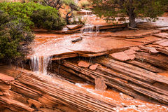Small Flash Flood in Northern Arizona Desert. Flash floods are usually thought of as huge, destructive forces, but this small river delivers precious water to royalty free stock images