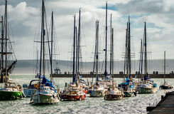 Small Fleet of Yachts. A small fleet of yachts  moored in a Marina Royalty Free Stock Images