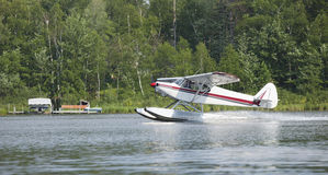 Small floatplane lands on a Minnesota lake. A small white floatplane lands on a Minnesota lake in summer Royalty Free Stock Photo