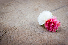 Small flower on wooden background. Royalty Free Stock Images