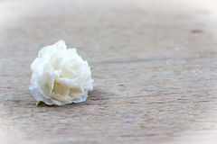 Small flower on wooden background. Stock Photo