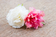 Small flower on wooden background. Royalty Free Stock Photos