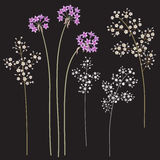 Small flowers on dark Royalty Free Stock Images