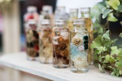 Small flowers in a glass bottle. Souvenir bottle with small flowers inside on the table royalty free stock photography