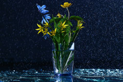 Small flowers in glass Stock Image