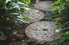 Small Footpath in garden made by round stone Stock Photos