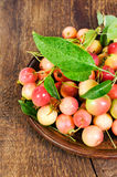 Small forest apples in a bowl Stock Photo