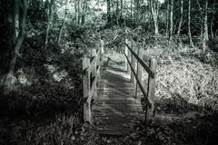 Small forest bridge over water in black and white stock photos