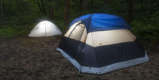Small forest campsite Stock Photography