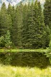 Small forest lake in Alpen mountains, place for relaxation and t. Small forest lake in Alpen mountains, place for walking, relaxation and tranquil vacation royalty free stock photography