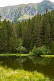 Small forest lake in Alpen mountains, place for relaxation and t. Small forest lake in Alpen mountains, place for walking, relaxation and tranquil vacation stock photography