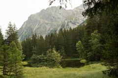 Small forest lake in Alpen mountains, place for relaxation and t. Small forest lake in Alpen mountains, place for walking, relaxation and tranquil vacation royalty free stock images