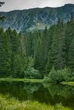 Small forest lake in Alpen mountains, place for relaxation and t. Small forest lake in Alpen mountains, place for walking, relaxation and tranquil vacation stock photo