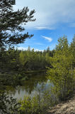Small forest lake stock image