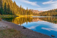 Small Forest Lake.Glacier National Park.Montana.USA stock photography
