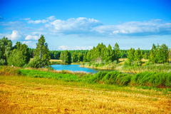 Small forest lake and sky in summer Royalty Free Stock Images