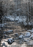 Small forest river Royalty Free Stock Photography