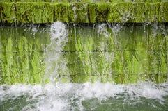 Small fountain Stock Photo