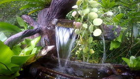 Small fountain in the form of a tree stock video footage