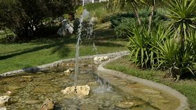A small fountain slow motion in the park with green trees and palm trees. In the distance is seen a jug from which water. A small fountain in the park with green stock video footage