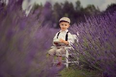 A small four years old smiling boy  on a lavender field at sunny summer day. A portrait of cute child  wearing white shirt, suspenders and hat,  sitting on white Stock Photos