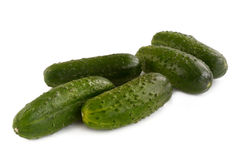 Small fresh cucumbers Stock Photo