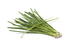 Small fresh spring onions Royalty Free Stock Images